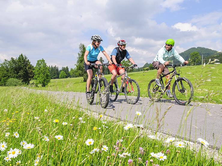 Bike Rentals Free